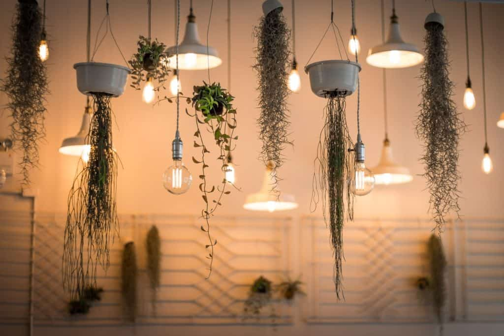 picking the right light bulbs for light fixtures