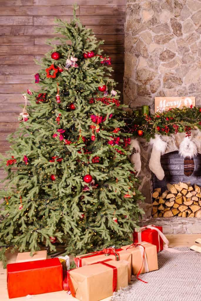 christmas tree safety tips for pet owners
