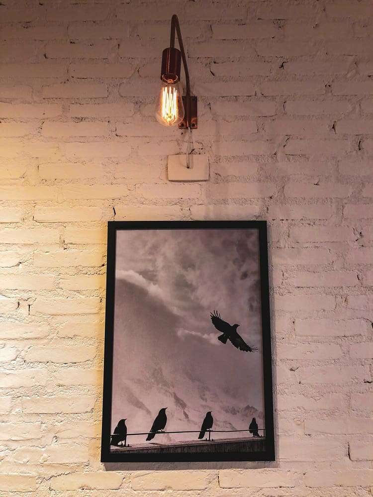lighting bird painting
